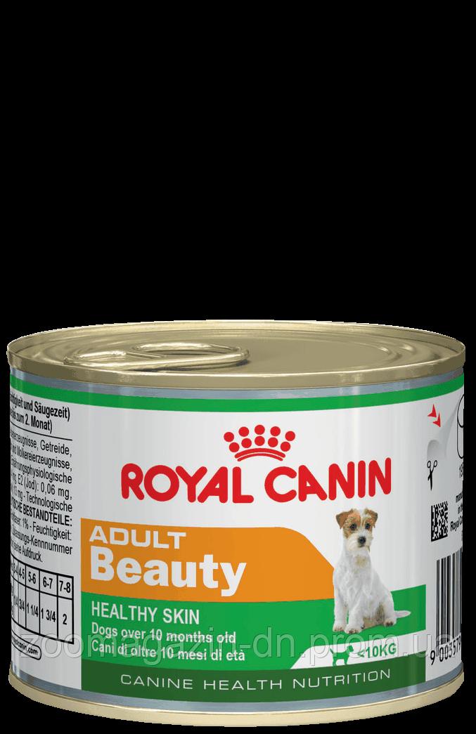 Royal Canin Adult Beauty Wet для собак мелких пород  0,195 кг