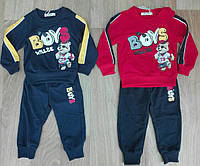 Спортивный  костюм 2 в 1 для мальчика оптом, Sincere, 80-110 см,  № ZOL-883