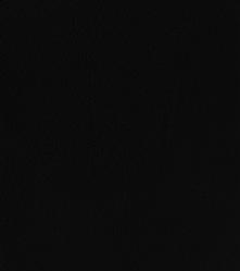 Краска для замши и нубука 50 мл чёрная  bskcolor platinum