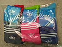 Жіночі бавовняні шкарпетки Adidas упаковка 12 пар різні кольори, фото 1