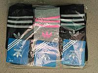 Жіночі бавовняні шкарпетки Adidas упаковка 12 пар різні кольори