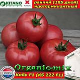 Семена, томат розовый КИБО F1 (KS 222), 100 семян, ТМ Kitano Seeds, фото 2