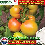 Семена, томат розовый КИБО F1 (KS 222), 100 семян, ТМ Kitano Seeds, фото 3