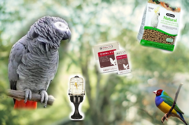 Попугаи, птицы и сопутствующие товары