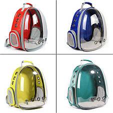 Рюкзак переноска для кошки собаки Зеленый, сумка для кота собак и домашних животных прозрачный рюкзаки с иллюминатором переноски Cosmopet Upet AnimAll, фото 3