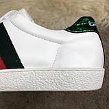 Gucci Web Sneaker White, фото 8