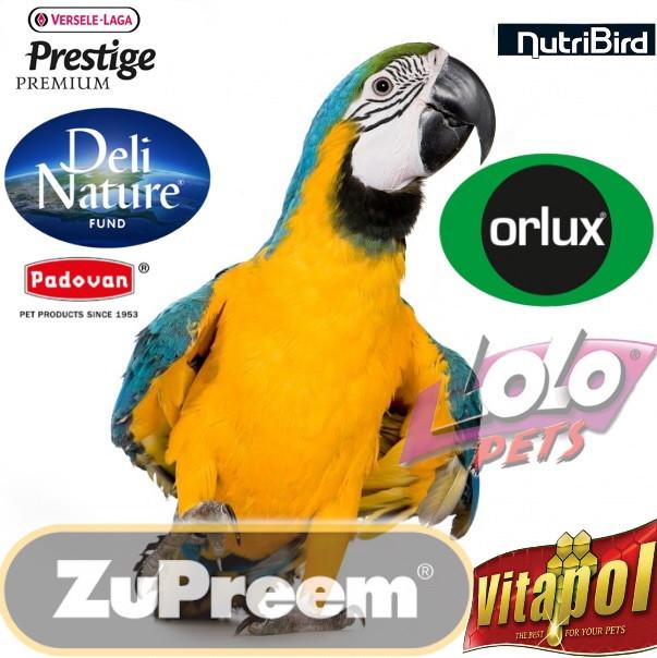 Корм для папуг і птахів