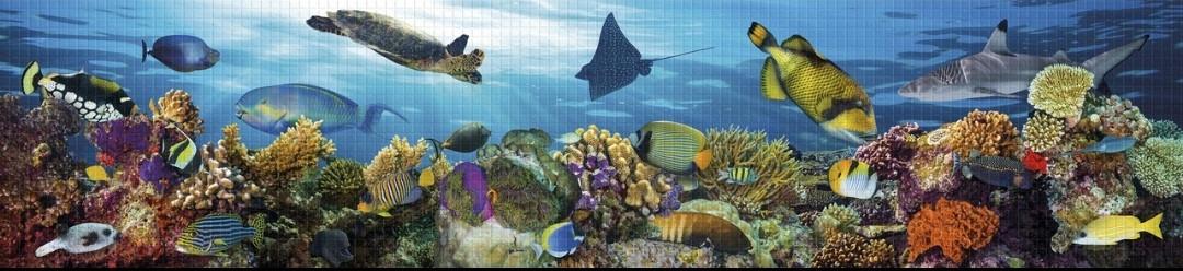 Панно з панелей Регул ПВХ Підводний світ 0,6мм 922х645мм комплект 3шт