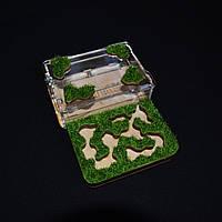 Муравьиная ферма Флора - минимальный комплект (S 143х106х30 мм.)