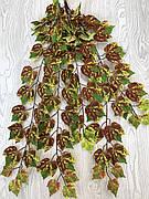Виноградный, осенний, ампельный куст ( 98 см )