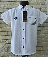 Белая рубашка на мальчика 5-8 лет с коротким рукавом, фото 1