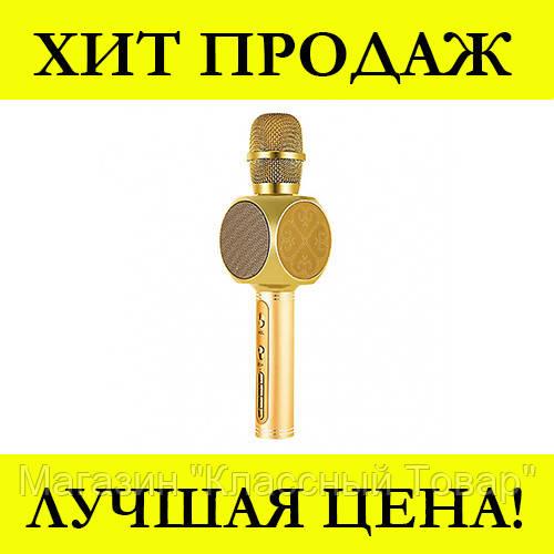 Микрофон DM Karaoke Y 68 + BT