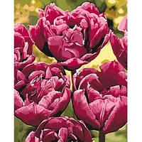 Цветы - Изысканная элегантность. Картина по номерам на холсте - 40х50. С подрамником. Идейка