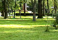 Газонный комплекс РЕМОНТНЫЙ 5 кг./мешок. АГРОЛЮКС (Германия)