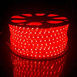 Стрічка LED на 220V 4W/m червона №10/5 120Led, фото 3