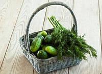 Способы длительного хранения огурцов: традиционные и непривычные
