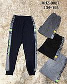Спортивные брюки для мальчиков Active Sports оптом, 134-164 рр. Артикул: XHZ0087