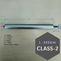 Поршень для пневмопатрона L-250мм Class 2