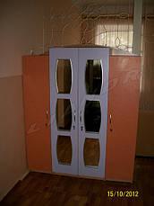 """Шкаф """"Тигринки"""", фото 3"""