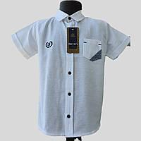 Белая рубашка на мальчика 5-8 лет с коротким рукавом