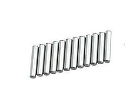 Pins 2.5X13Mm 12P