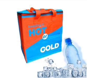 Сумка Холодильник Термос Cooling Bag DT4244