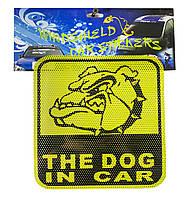 Наклейка на автомобиль. Наклейка собака в машине, на стекло