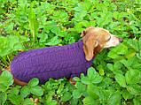 Фиолетовый свитер для таксы или маленькой собаки, фото 8