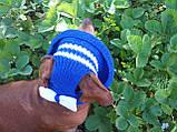 Летняя шапка для маленьких собак и котов,панамка для таксы, фото 5