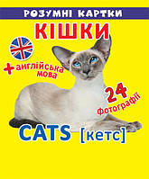 Розумні картки Кішки 12 карток, Кристал Бук, фото 1
