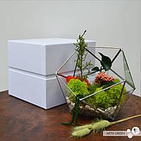 Подарочная упаковка для флорариума