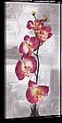 """Картина на холсте YS-Art XP216 """"Орхидея"""" 50x100, фото 3"""