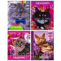 """Дневник А5 """"Красивые котята"""" в твердой обложке 20217-20220 (УКР)"""