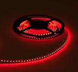 Стрічка червона 9,6W/м 120LED/м IP20 світлодіодна 8mm MTK-600R3528-12 №1, фото 2