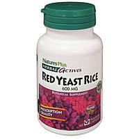 Красный Дрожжевой Рис 600мг, Herbal Actives, Natures Plus, 60 гелевых капсул