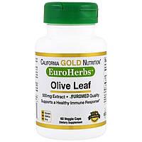 Экстракт Оливковых Листьев, Olive Leaves, California Gold Nutrition, 500 мг, 60 капсул