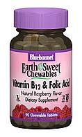 Витамин В12 и Фолиевая кислота, Вкус Малины, Earth Sweet Chewables, Bluebonnet Nutrition, 90 жевательных таблеток