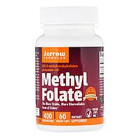 Метил Фолиевая Кислота (Метилфолат) 400 мкг, Methyl Folate, Jarrow Formulas, 60 гелевых капсул