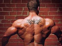 Турник Iron Gym брусья съемный тренажер в дверной проём, фото 2