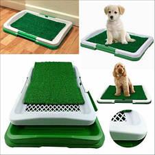 Домашний туалет для собак Puppy Potty Pad, фото 3