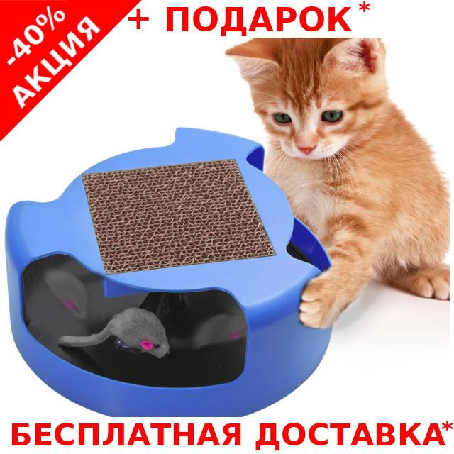 Интерактивная игрушка - когтеточка для кошек и котят Cat & Mouse Chase Toy Поймай мышку