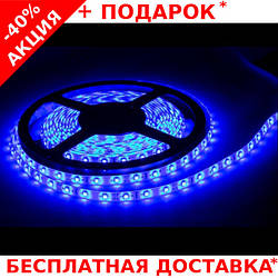 Светодиодная лента LED STRIP 5050 - 12W Blue синяя для внутренних работ 60 диодов / метр
