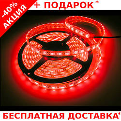 Светодиодная лента LED STRIP 5050 - 12W Red красная для внутренних работ 60 диодов / метр