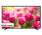 "4K UHD телевизор Sharp LC-43UI7352E (43"")Модуль ACE PRO, фото 5"
