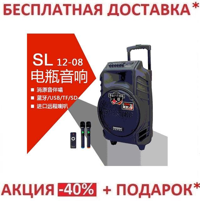 Комбоусилитель-колон караоке TEMEISHENG PERFECT SOUND SL12-08