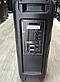 Активная переносная колонка с радиомикрофоном Temeisheng TMS-208A, фото 3