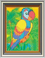 Схема для вишивки бісером Папуга. Арт. СД-095