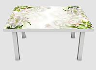 Наклейка на стол Zatarga Нежное цветение 650х1200мм для домов, квартир, столов, кофейн, кафе
