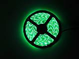 LED Ленты (5050) Green - Зелёный длинна 5 метров Лед (ВидеоОбзор), фото 6