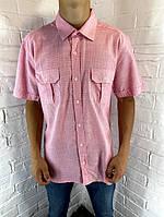Рубашка мужская Welldone 48 с коротким рукавом розовая M - 5XL
